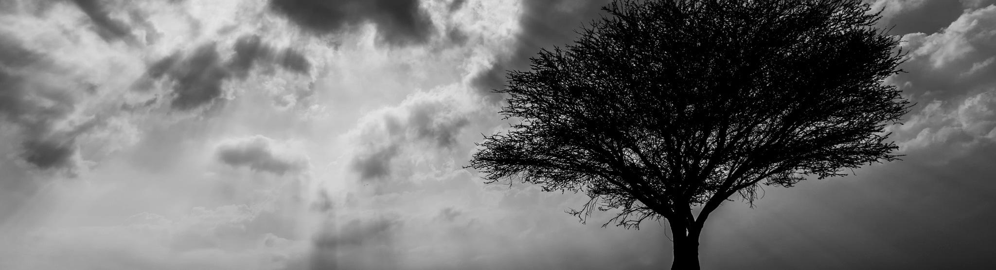 strom-foto