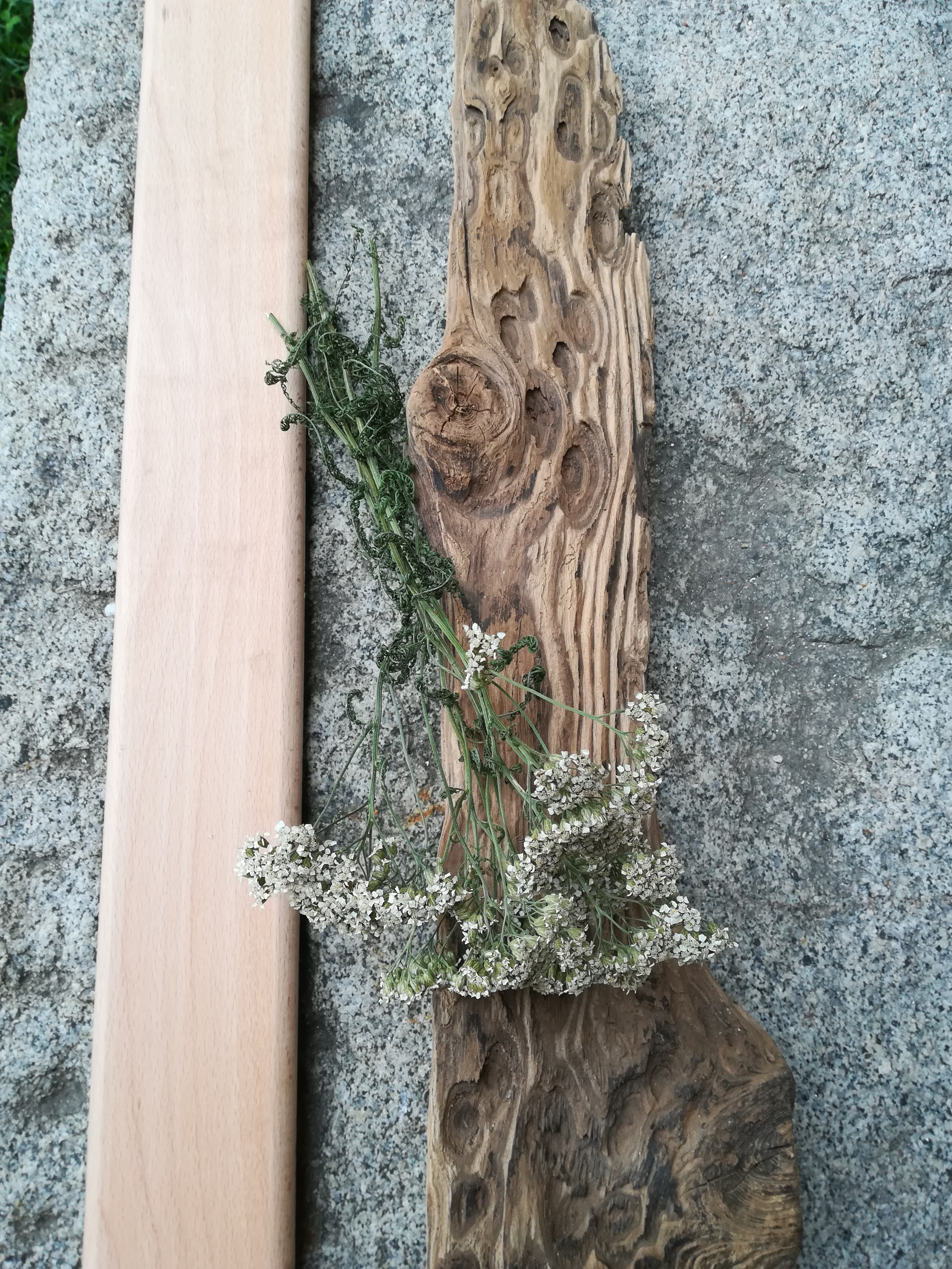staré a nové dřevo